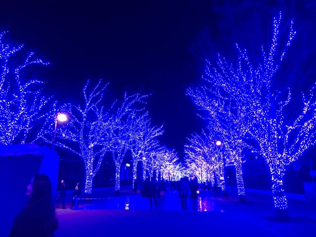 東京イルミネーション♪青の洞窟に行ってきました