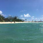 アメデ島ツアー(2)ニューカレドニア旅行4日目