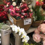 造花の花材屋さん東京堂へ行ってきました🌸