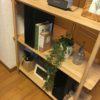 FrancFrancのフェイクグリーン インテリア小物でおしゃれな部屋に(4)